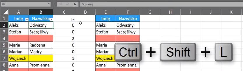 Rys. nr 8 - Filtrowanie i użycie skrótu klawiszowego Ctrl + Shift + L