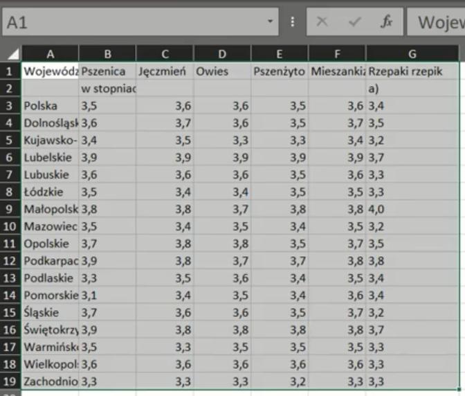 Rys. nr 21 – Tabelka wklejona do Excela