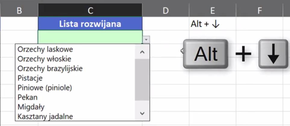 Rys. nr 4 – rozwijanie listy za pomocą skrótu klawiszowego Alt+Strzałka w dół