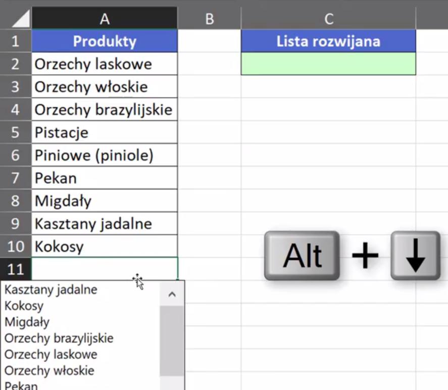 Rys. nr 5 – automatyczna lista danych
