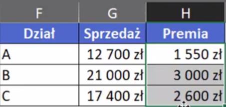 Rys. nr 4 – tabelka zsumowanych danych Sprzedaży i Premii dla poszczególnych grup