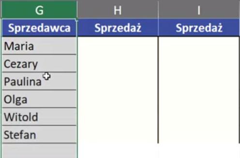 Rys. nr 6 – kolumna z unikatowymi wartościami (sprzedawcami)